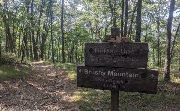 Trail Sports Amid COVID-19